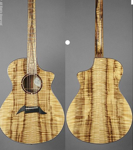 illustrative image of Where are the Breedlove Guitars made