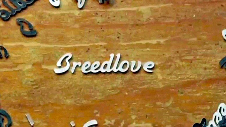 illustrative image of Breedlove
